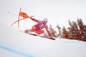 Downhill Training: interim results after 40 racers